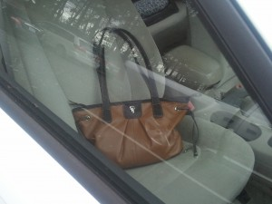 bag in car